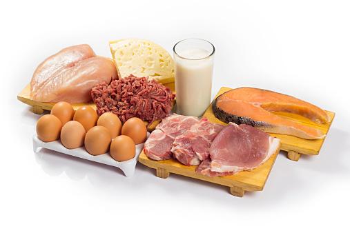 動物性タンパク質